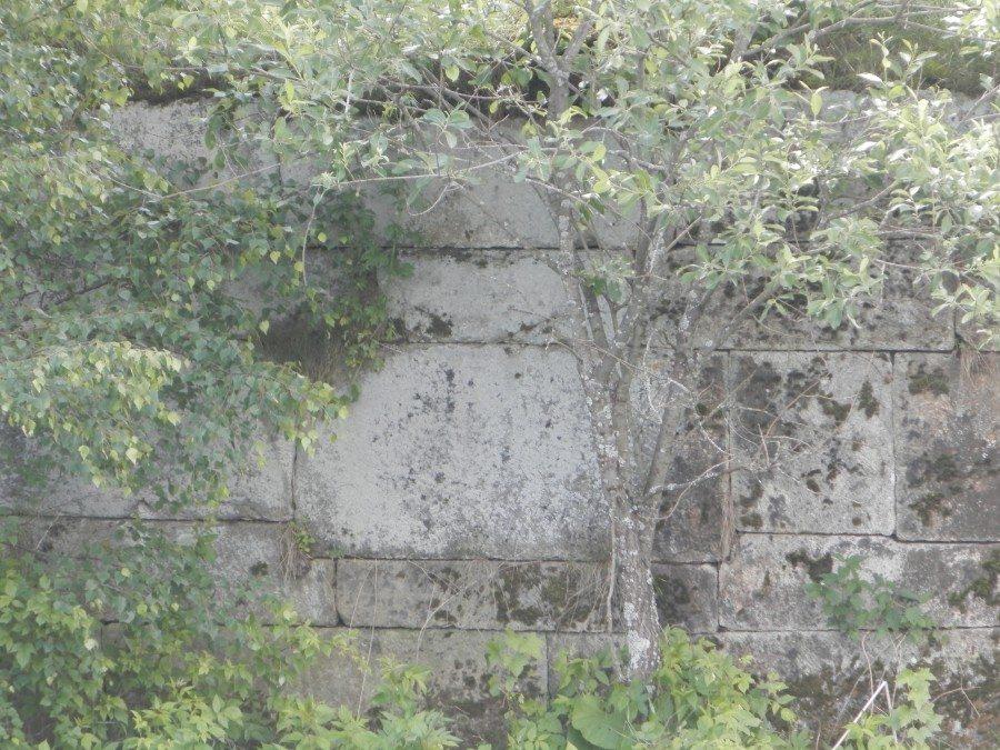 P7020495