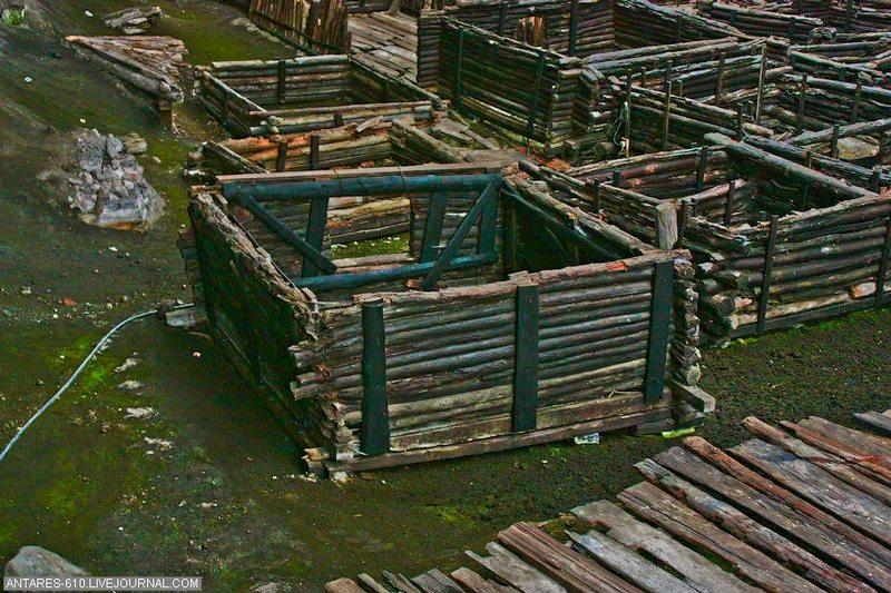 Раскопки древних допотопных слоев sibved