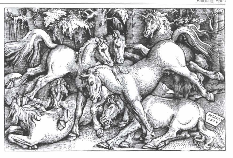 Ханс Бальдунг. Семь дерущихся лошадей.