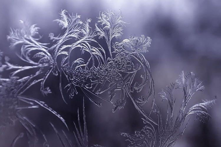Ein Fenster an einem frostigen Morgen