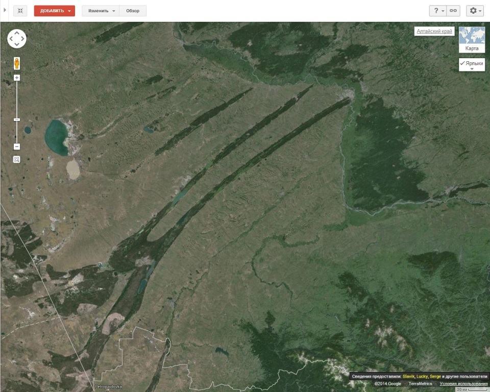 ленточные боры Алтайского края