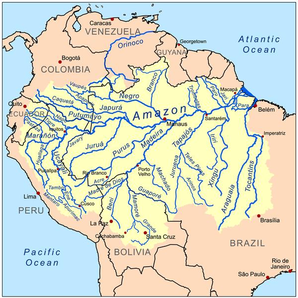 Teoria logística da civilização. Parte 1 Manaus Игорь Шкурин